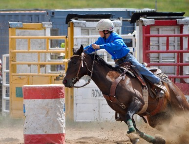 rodeo-2003194_1920